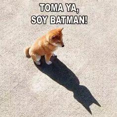Toma ya, soy Batman