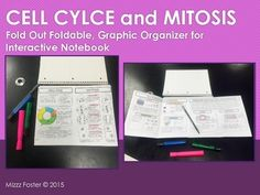 Cell Cycle and Mitosis Graphic Organizer Foldable for Inte