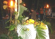 Noite Tropical