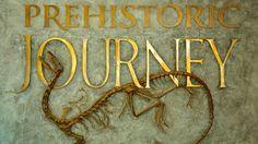 denver museum of nature and science | Denver Museum of Nature and Science - Denver - Tourism Media