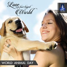 Lets pledge to treat animals the way we treat our loved ones this World Animal Day.