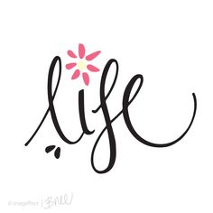 'Life' - Hand lettering, illustrated type with pink daisy.
