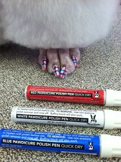 luxury dog spa and grooming line Warren London created nail polishes for dogs—so your pets can get 'pawdicures'.