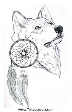 Lobo Con Plumas De Tocada De Cacique M 225 S Cerca Del