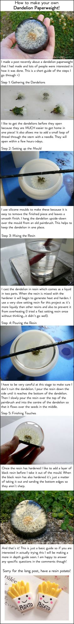The post Dandelion paperweight tutorial! 2019 appeared first on Jewelry Diy. Cute Crafts, Crafts To Do, Diy Resin Crafts, Creative Crafts, Dandelion Paperweight, Dandelion Necklace, Dandelion Art, Papier Diy, Creation Deco