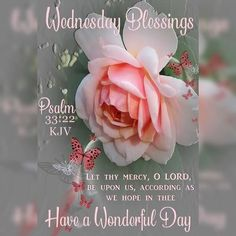 Blessed Morning Quotes, Cute Good Morning Quotes, Blessed Quotes, Morning Blessings, Happy Quotes, Wednesday Morning Images, Wednesday Morning Greetings, Morning Greetings Quotes, Morning Messages