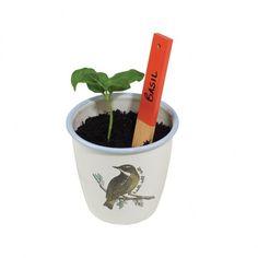 Enamel Herb Pot Set