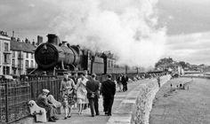 dawlish train - Google Search