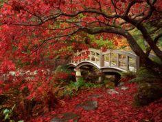 Japanese Gardens at Royal Roads University, Victoria, BC