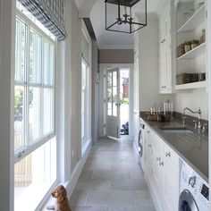 Avoiding laundry day, a how-to guide by the cutest puppy around. This charming catwalk (er, dogwalk) by Hayburn & Co space features Ginger counters and luxury abound!