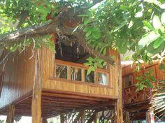 Samara Tree House Inn, Playa Samara, Costa Rica  Been here...it's amazing!
