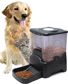 OxGord® Dog Feeder Automatic Electronic Timer Programmable Timed Portion Control for Slow or Fast Feeding, Voice Recording, Jam Proof, LCD Display, attached elevated bowl and above Storage Container good for Large to Small Dogs - 2015 Newly Designed OxGord http://www.amazon.com/dp/B00MU2F8C6/ref=cm_sw_r_pi_dp_-0Z2vb1GQR06G