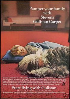 Old English Sheepdog Stevens Gulistan Carpet (1967)