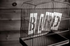 #bird #birdcage #black and white #cage