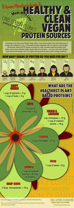 A Green Monster's Guide to Healthy and Clean Protein Sources [INFOGRAPHIC]