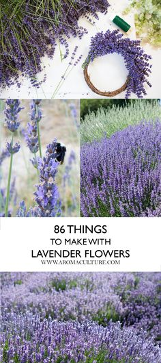 86 THINGS TO MAKE WITH LAVENDER FLOWERS.jpg