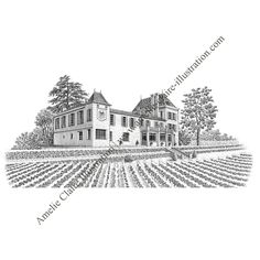 Château Saint-émilion, 2ème vue - Amelie Claire illustration traditionnelle