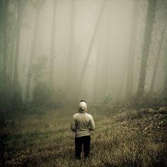 A Boy In A Dark Forest.