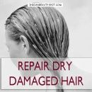 Natural Treatment – Repair Dry Damaged hair