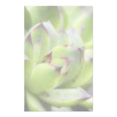 Hens And Chicks - Sempervivum Personalized Stationery $0.95