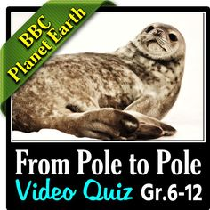 bbc planet earth from pole to pole episode editable video worksheet to keep your students on. Black Bedroom Furniture Sets. Home Design Ideas