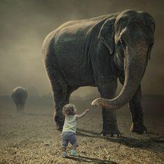 ❥ Elephant Love