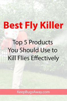 Want to kill flies? Here are top 5 best products you should use to kill flies effectively. Choose your best fly killer now and start killing them. Pest Spray, Flies Outside, Get Rid Of Flies, Pest Solutions, Stressed Out, Make It Through, How To Get Rid, Pest Control