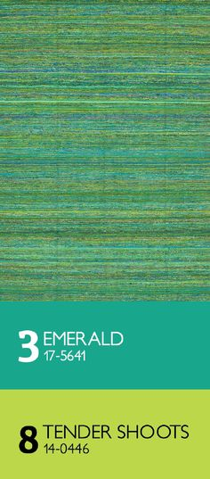 modernrugs.com What an exquisite flat woven modern Rug! Emerald and Tender Shoots Greens go well together.