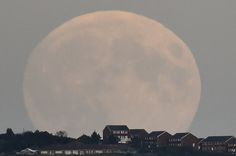 'Blood moon' rises as super moon and lunar eclipse combine – pictures from around the world