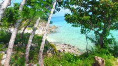 PALAWAN : de Puerto Princesa à Coron en 10 jours Puerto Princesa, Coron, Palawan, San Jose, Art Café, Les Philippines, Road Trip, Water, Outdoor Decor