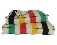 hudson bay dog bed.  Love this idea, but I'd never get the dog hair out!