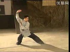 Wushu Chang Long Ba Ji Quan