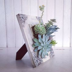 Inspiring 21 Amazing Succulent Wall Art To Be Hang on The Wall https://decoratio.co/2018/01/05/succulent-wall-art/ Got stucked looking for an idea that will make your house looks greener and fresher? No worries. You can always have a succulent wall art at your house. It is low maintenance and also looks so pretty to hang on the wall. #wallgardens