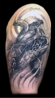 realistic sea turtles tattoo done by frankenshultz @ Artlabs tattoo studio federal way Washington