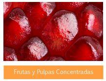 PULPAS Y CONCENTRADOS DE FRUTAS MEXICO