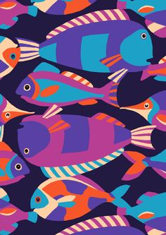Minakani / Brights Fish Design / Graphic