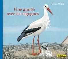 Amazon.fr: thomas muller: Livres