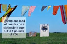 Bring back the clothesline!: Using a clothesline to dry your clothes whenever possible is a great way to reduce carbon emissions. If you have a restrictions consider starting, or signing, a petition to support legislation that would void clotheseline bans by homeowner's associations.