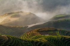 The Dragon's Backbone Rice Terraces in South China in the early morning mist. A lone farmer tills his land in an atmospheric, literally, setting. National Geographic Photo Contest, Vietnam, Rice Paddy, Great Shots, Photo Location, Southeast Asia, Travel Photos, Mists, Waterfall
