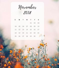 November 2018 Calendar for iPad and iPhone Calendar Wallpaper, Iphone Wallpaper, November Calender, November Wallpaper, Public Holidays, Calendar 2018, Cool Backgrounds, Hello Autumn, Ipad