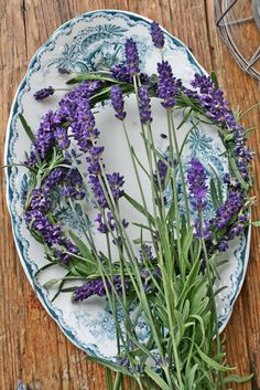 pretty, lavendar on blue and white