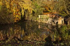 A bridge scene in Castle Ashby grounds Bridge, Castle, Scene, Mansions, House Styles, Projects, Decor, Log Projects, Blue Prints