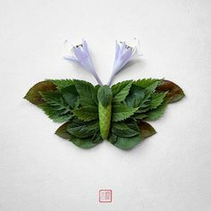 Natura Insects is a beautiful series from the Japanese artist and designer Raku Inoue, currently based in Montreal, who imagines delicate floral compositions by recreating insects with leaves and flower petals. Land Art, Flower Show, Flower Art, Flower Mandala, Colossal Art, Insect Art, Arte Floral, Nature Crafts, Japanese Artists