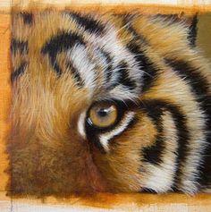 Pintar animais