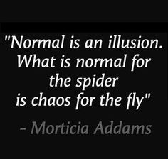 """""""Normal is an illusion. What is normal for the spider is chaos for the fly."""" (Morticia Addams) #quote #inspiration"""
