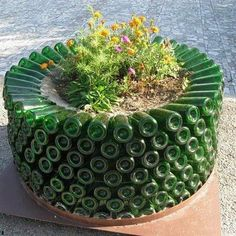 Planter made of old wine bottles