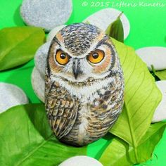 Painted Rock Owl ! Is Painted with high quality Acrylic paints and finished with Glossy varnish protection.