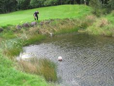 Interview with a FootGolf expert: Some questions that I posted to Ro at FOOTEE TALLAGHT about the burgeoning foot-golf scene in Ireland Country Uk, In The Hole, Best Start, Putt Putt, Get Outdoors, I Am Game, World Cup, Ireland, Golf Courses