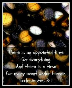 a time for everything ...