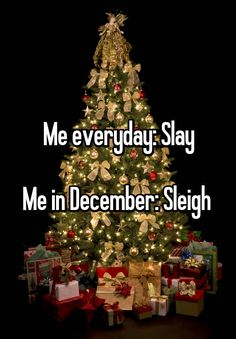 """Me everyday: Slay Me in December: Sleigh """
